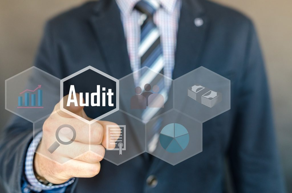 Our Audit Expertise